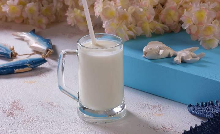 Ayran (diluted salty yoghurt drink)